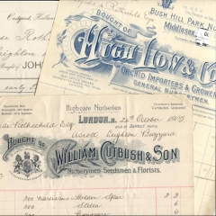 Receipts for plants supplied to the Rothschild estate at Aston Clinton 1905
