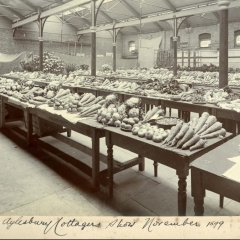 Produce from Aston Clinton on display at the Aylesbury Cottager's Show 1899