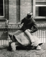Walter 2nd Lord Rothschild and his giant tortoise 'Rotumah'