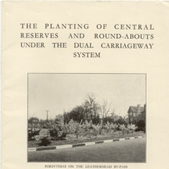 The planting of central reserves and round-abouts
